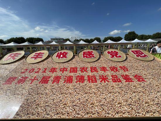 """上海青浦区""""中国农民丰收节""""活动启动"""